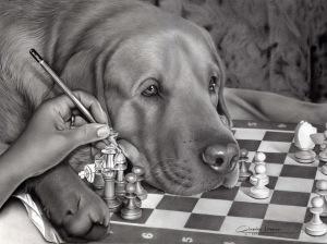 Cachorro Alta
